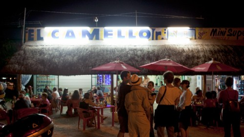 El Camello Jr.
