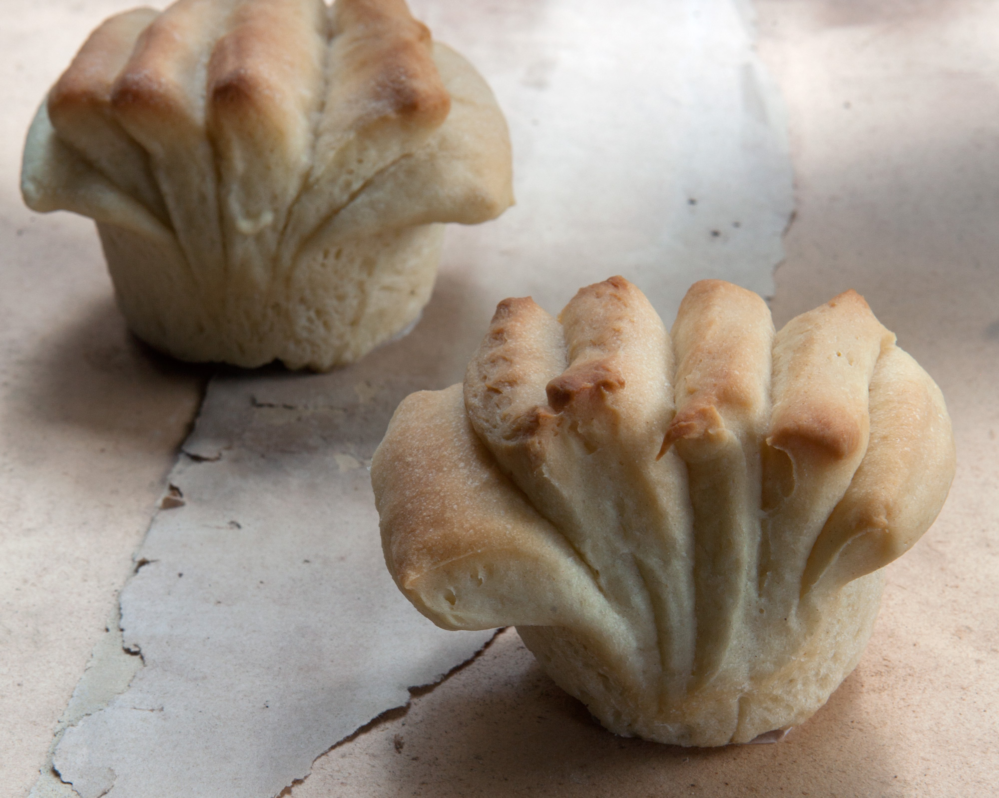 Buttermilk Fantails: Ventagli al latticello